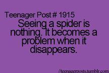My Arachnophobia