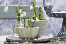 decoraties lente