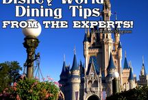 A Disney Experience