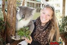 Places we visit onthe Phillip Island Tour