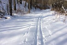 Winter Hiking / Ideas and tips for enjoying the trails outdoors in the winter