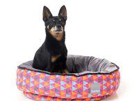 Lucky Pet - Beds
