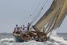 Vela Clásica y de Época / Fotografías de los veleros más bellos del mundo. Verdaderos museos flotantes.
