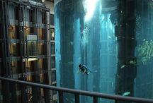 Aquariums  / by Jennifer McVey