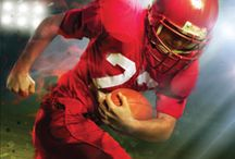 Sports Fiction / Sports fiction titles in the library
