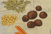 Wanderlust Designer Food Illustrations / I am an illustrator/artist who loves to experience the world creatively. Here is a sample portfolio of my food illustrations and worldly recipes inspired by my travels and love of culture. For more details, see my website & portfolio: www.wanderlustdesigner.com  / by Wanderlust Designer