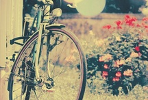 Bicycles♥