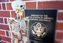 Events & Holidays / #Photos from American events in #Australia! #Halloween #IndependenceDay #July4