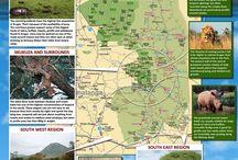 South Africa [Kruger National Park]