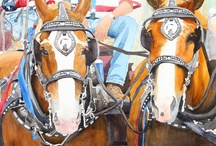 Ally's Horse Paintings