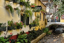 Madeira, Portugal / Inspiration for travelling to Madeira islands in Portugal. Landscapes, streets, architecture and more ideas for things to see and do on vacation and holiday