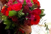 Мое / Цветы