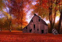 Barns / by Gloria Watson