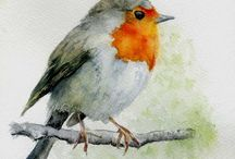 madárka