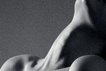 Human Body: Neck & Collarbone