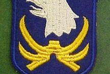 101st Infantry Division