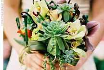 Wedding Ideas for the day I get married / by Anjelica O'Shea