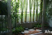Flotte planter (palmelignende)