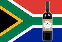 Vinhos Sul-Africanos / Seleção de Vinhos Sul-Africanos