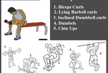 Musculation corps entier