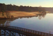 Cuscowilla Golf / Award Winning Golf Course! / by Cuscowilla
