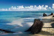 Costa Rica ¡Pura Vida! / Sin duda este país es Pura Vida... y Pura Belleza