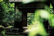 Japão - o meu sonho
