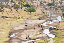 Tansania / Next Urlaub