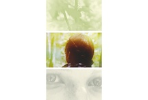 The Hunger Games<3 / by Marcus Bullard