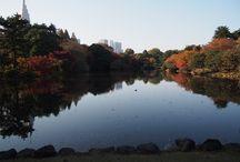 Tokyo Snapshot
