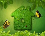 Go Green! / Better Homes and Gardens Rand Realty's board on how to live and build green.
