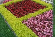 Diseños Jardinería