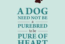 dog quotes / funny&heartbreaking quotes