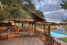 Savute Elephant Camp / Set on the banks of a river, Savute Elephant Lodge is a magnet for wildlife. The lodge has its own swimming pool, outdoor showers and alfresco dining in a traditional boma, adding to the experience of living in the very heart of the bush.