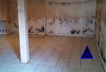 Extreme and Minor Mold Removal / Mold Removal images for the purpose of showing mold in a home or building.
