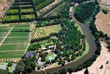 Berg River Resort / For any information you may visit the website.  http://www.bergriverresort.co.za/