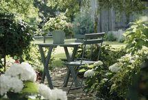 Garden / My drem garden