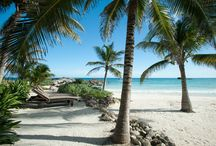 Yoga Retreat at Maya Tulum / Yoga, meditation, spiritual rituals, fun excursions in beautiful Maya Tulum.  No yoga experience necessary.  Just bring your open heart to experience the best trip ever!