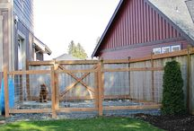 Dog enclosure ideas