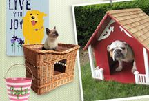 Preppy Paws / Our pets are a big part of life in Wilton Manors Florida USA. Here are just some fun pictures of the dogs and kitty cats around town. Plus I've added some real special accessories for our little ones. Looking for a condominium or townhome community that is Pet Friendly, ask Henri Vezie and Frank Vigliotti at the Henri Frank Group at REMAX, we have the list for you.