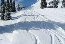Skiing  / by Teri Grimes Brown