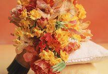 Amo las flores / by Fabiola Carmona
