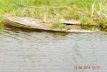 """Polderlandschap / Polderlandschap nabij het """"Groenehart""""  in Gouda."""