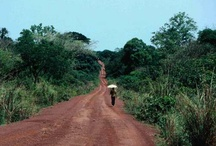 >|Cenral Africa|< / All about travel inspiration for Central part of Africa.