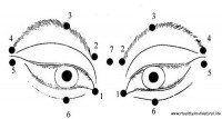 les yeux  ( vision )