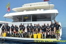 REBREATHER EXPEDITION MALDIVES-MY DUKE OF YORK / A GREAT EXPEDITION!!!
