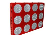Indoor LED Grow Lights / Discussion of how our LED Indoor Grow Lights work wonderfully.
