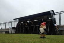 Silverstone Gnome / by Lotus F1 Team