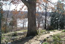 Take a hike in Stafford, Va / Plenty of places to hike and enjoy the outdoors in Stafford County!