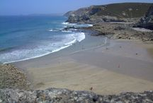 Britain's best beaches for dogs / Pictures of the best dog friendly beaches in Britain